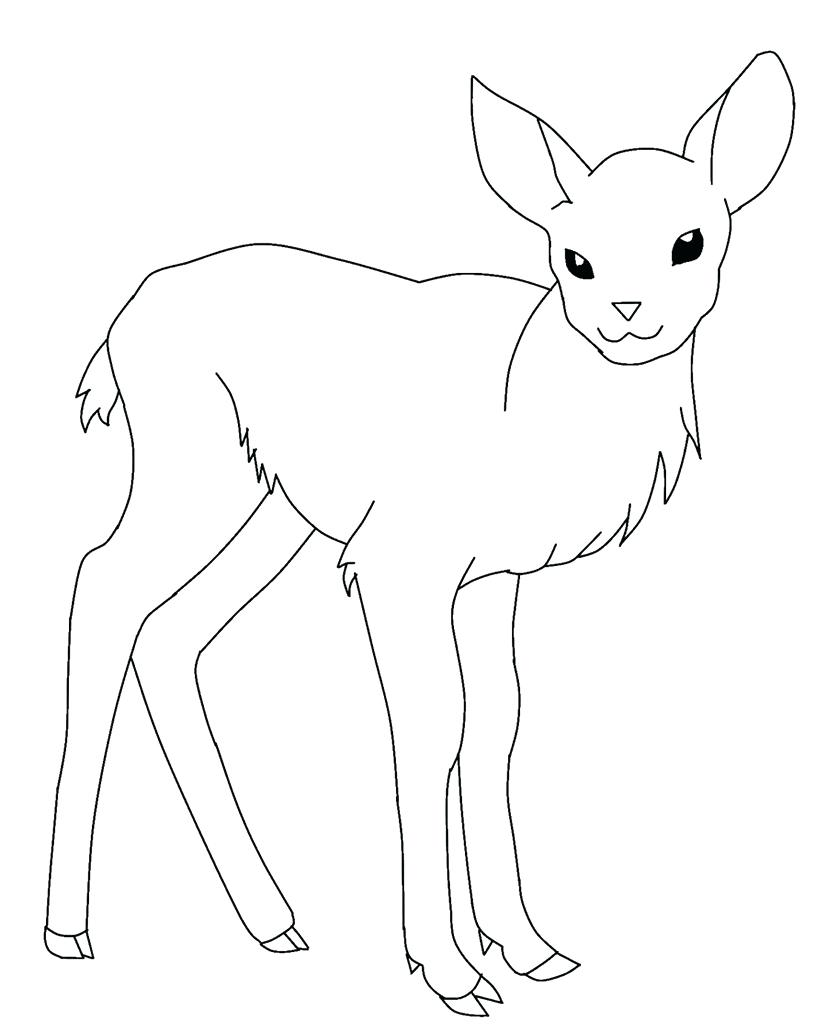 827x1032 Coloring Pages Deer Coloring Pages Baby Sheets Deer Coloring
