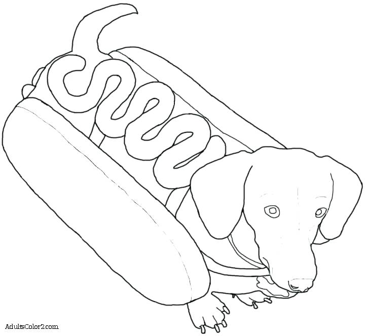 732x663 Dog Coloring Pages Coloring Pages Dogs Packed With Dachshund