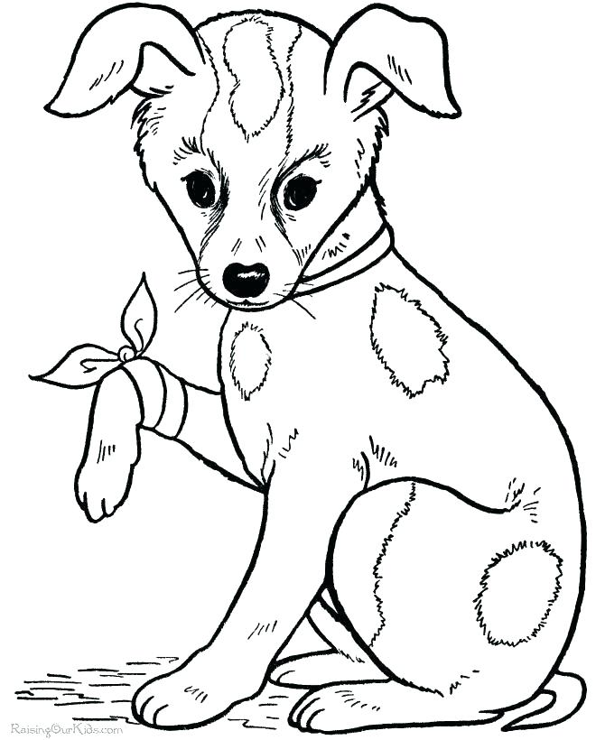 670x820 Cute Dog Coloring Pages Dog Coloring Pictures Big Coloring Pages