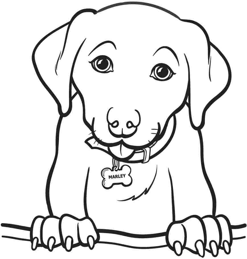 Cute Dog Coloring Pages For Kids at GetDrawings.com | Free for ...