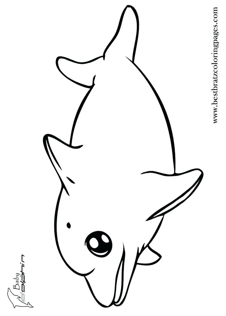 736x1030 Cute Dolphin Coloring Pages Baby Colouring Coloring Collection