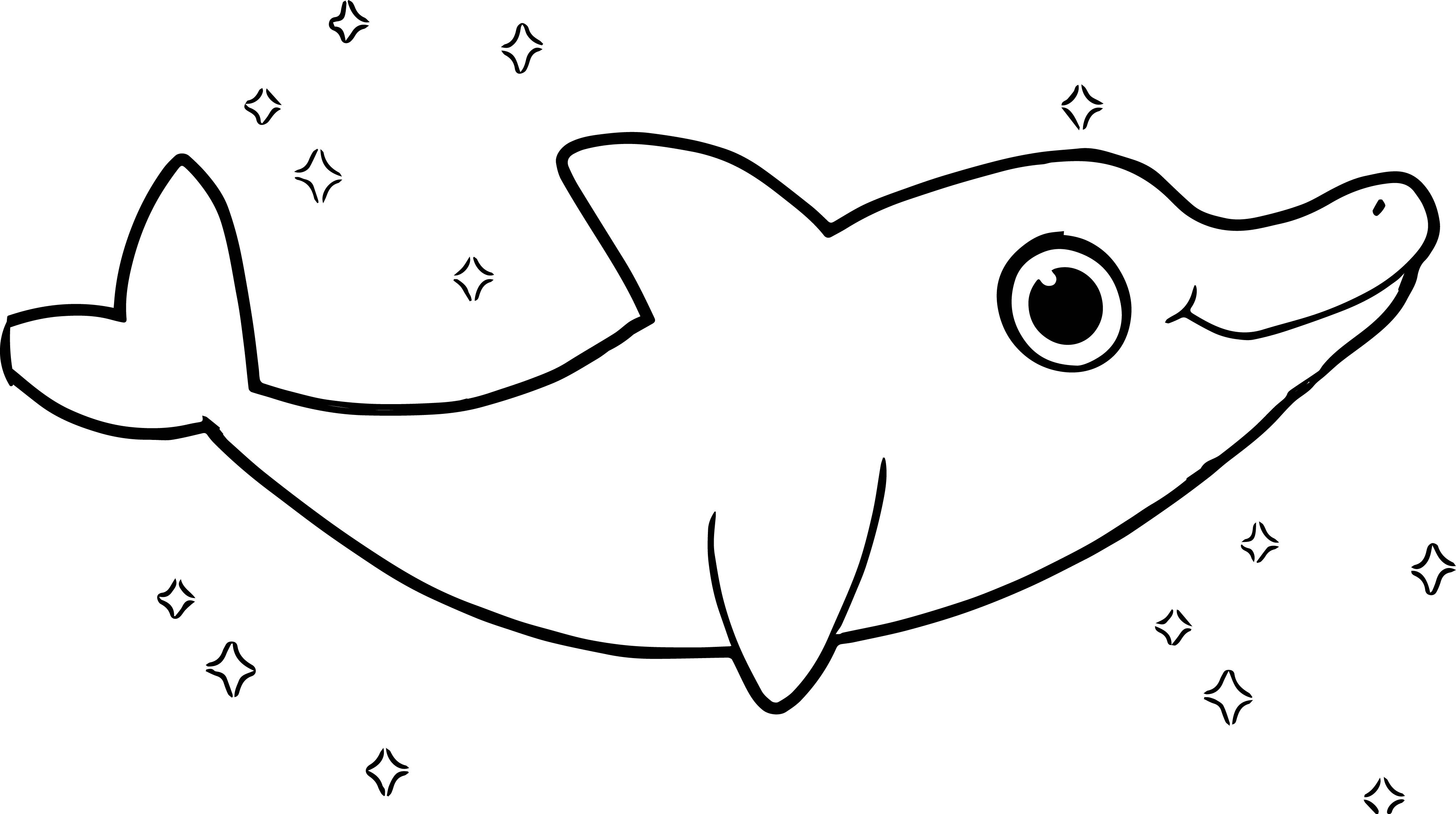 4021x2250 Printable Dolphin Coloring Pages For Kids Coloringstar Within