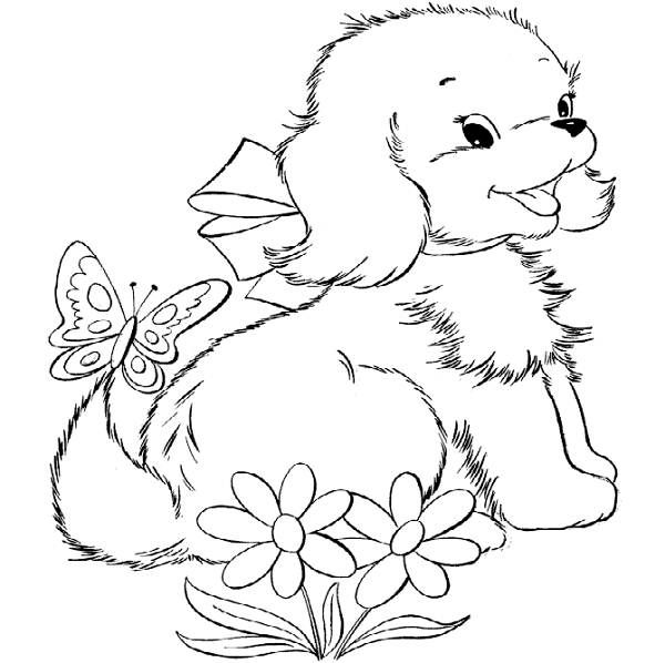 600x598 Cute Dolphin Coloring Pages Cute Puppy Coloring Pages For Kids