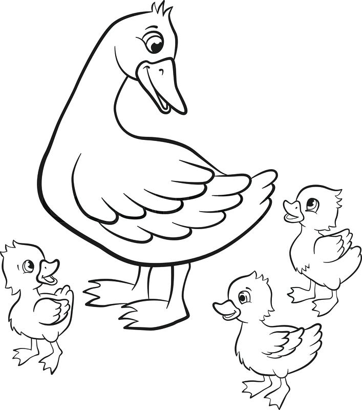 707x800 Duck Color Page Duck Color Page Duck Coloring Pages Duck Dynasty