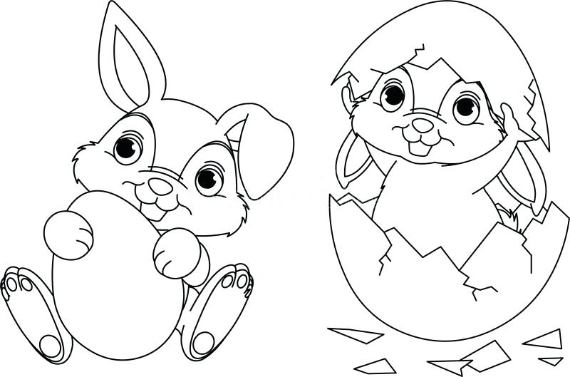 800x529 Bunny Coloring Page Download Bunny Coloring Page Stock Vector