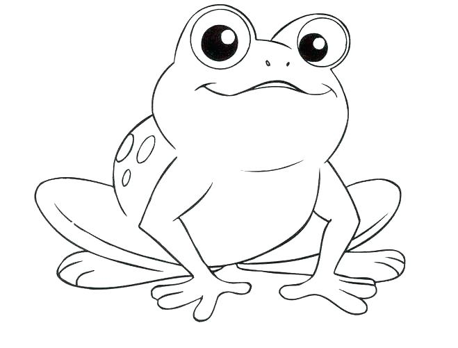 659x501 Cute Frogs Coloring Pages Printable Coloring Bullfrog Animal