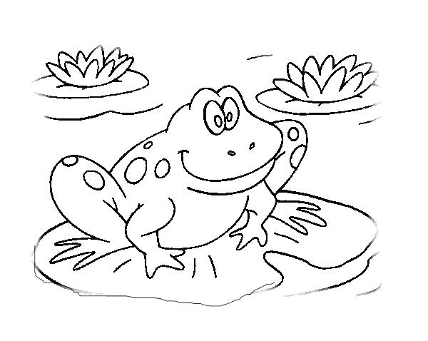 600x478 Frogs Coloring Pages Frogs Coloring Pages Frog Coloring Book