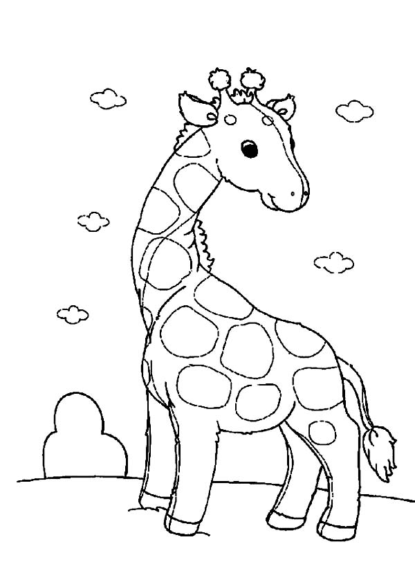 600x812 Funny Giraffe Coloring Page