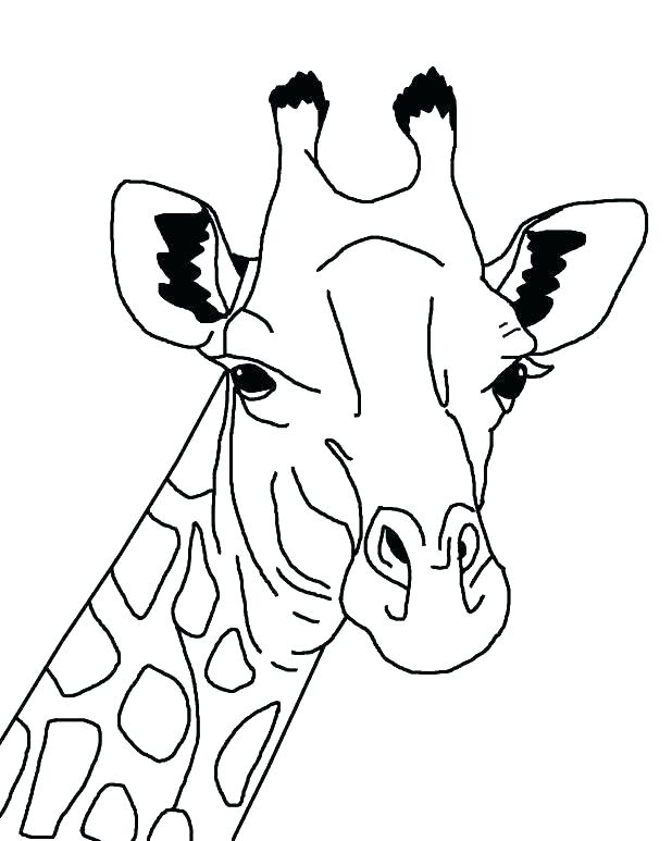 618x773 Giraffe Color Pages Cute Giraffe Coloring Pages Giraffe Coloring