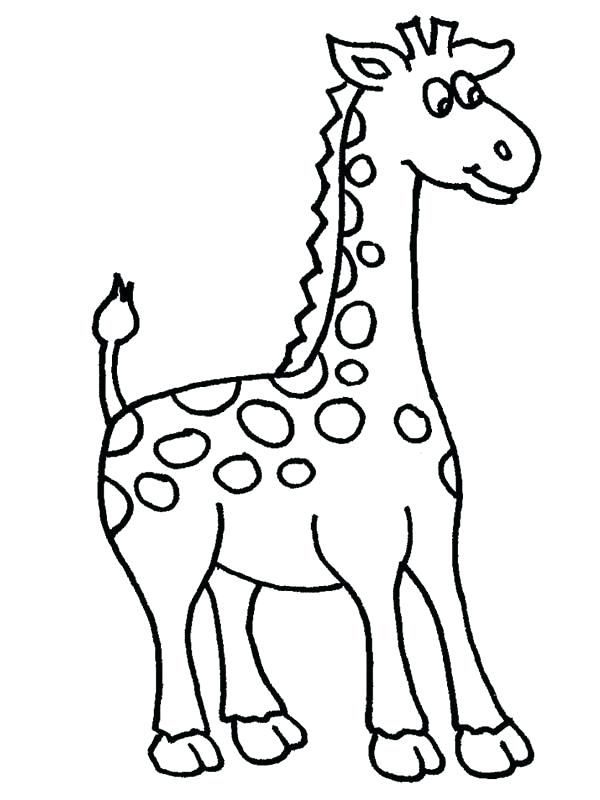 600x800 Giraffes Coloring Pages Amazing Giraffe Coloring Page Giraffe