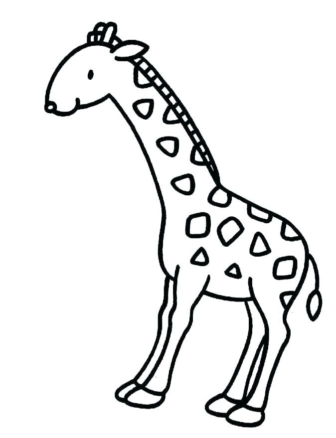 674x879 Coloring Pages Giraffe Coloring Page Giraffe Coloring Picture