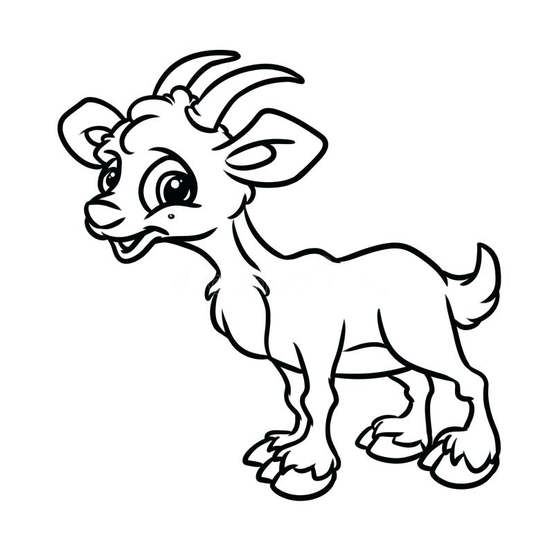 800x800 Free Cute Goat Coloring Pages Free Cute Goat Printable Goat