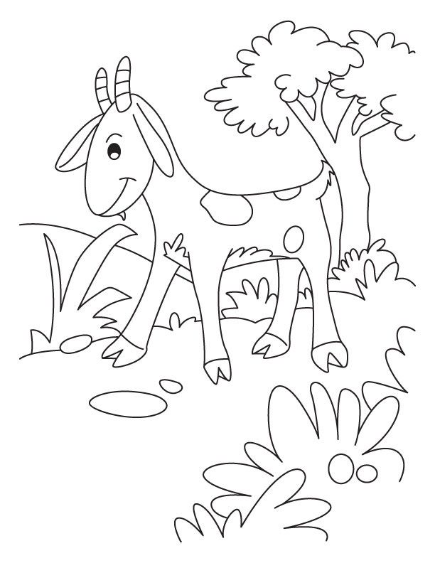 612x792 Free Cute Goat Coloring Pages Coloring