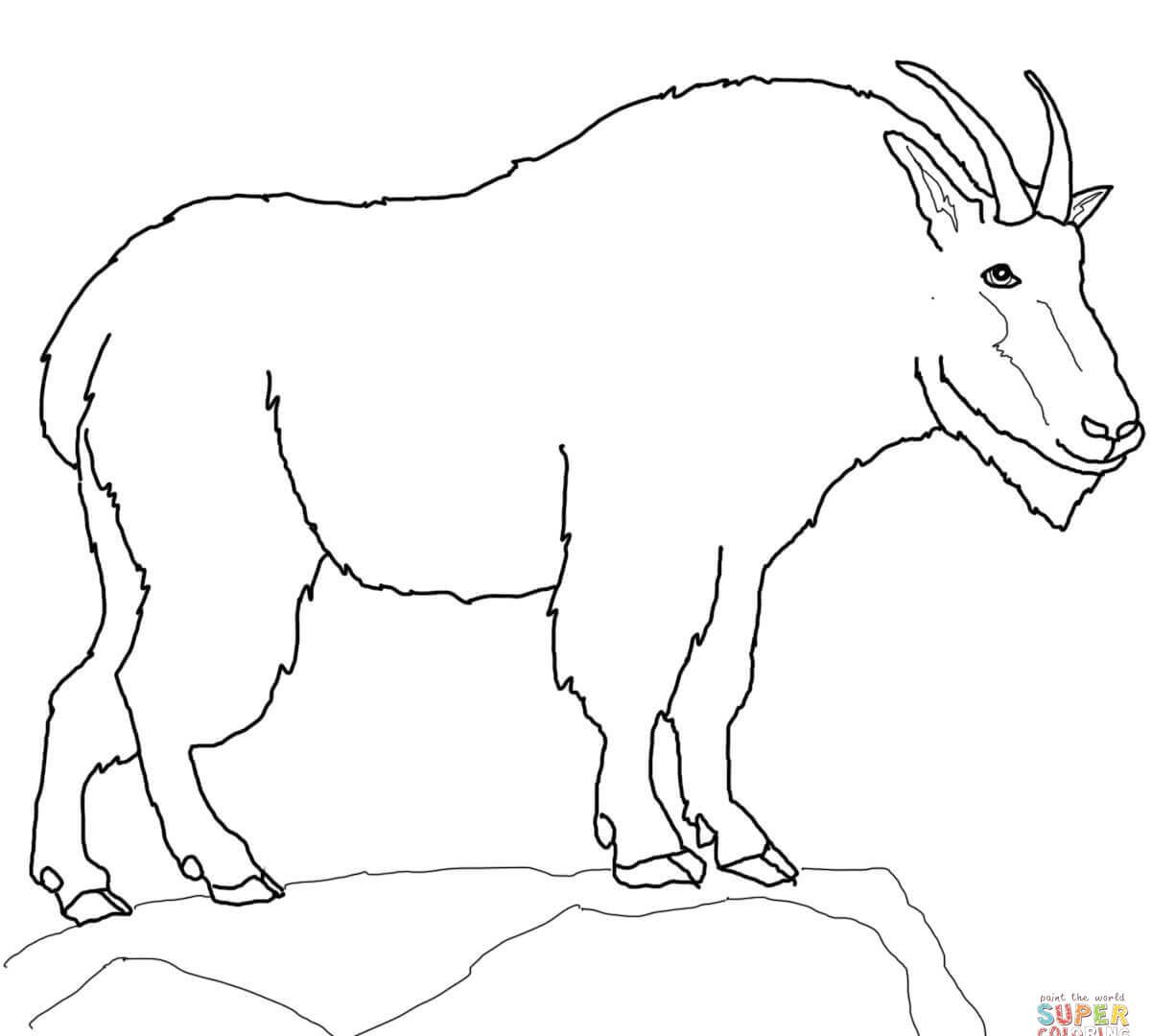 1200x1080 Coloring Pages Farm Animals Cute Billy Goat Smiles Free Printables