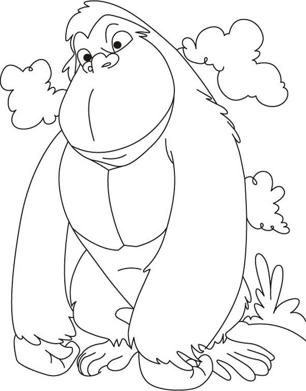 Cute Gorilla Coloring Pages at GetDrawings   Free download