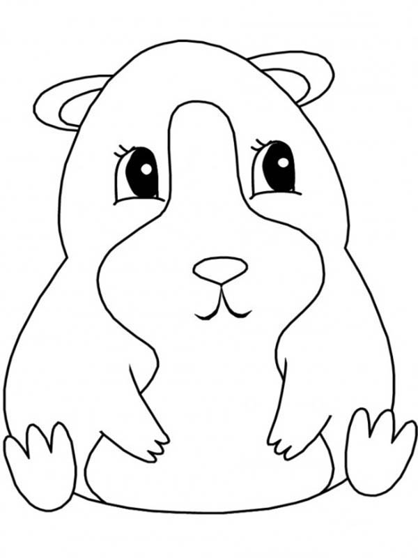 600x800 Guinea Pig, Guinea Pig Sitting Coloring Page Quilters Way