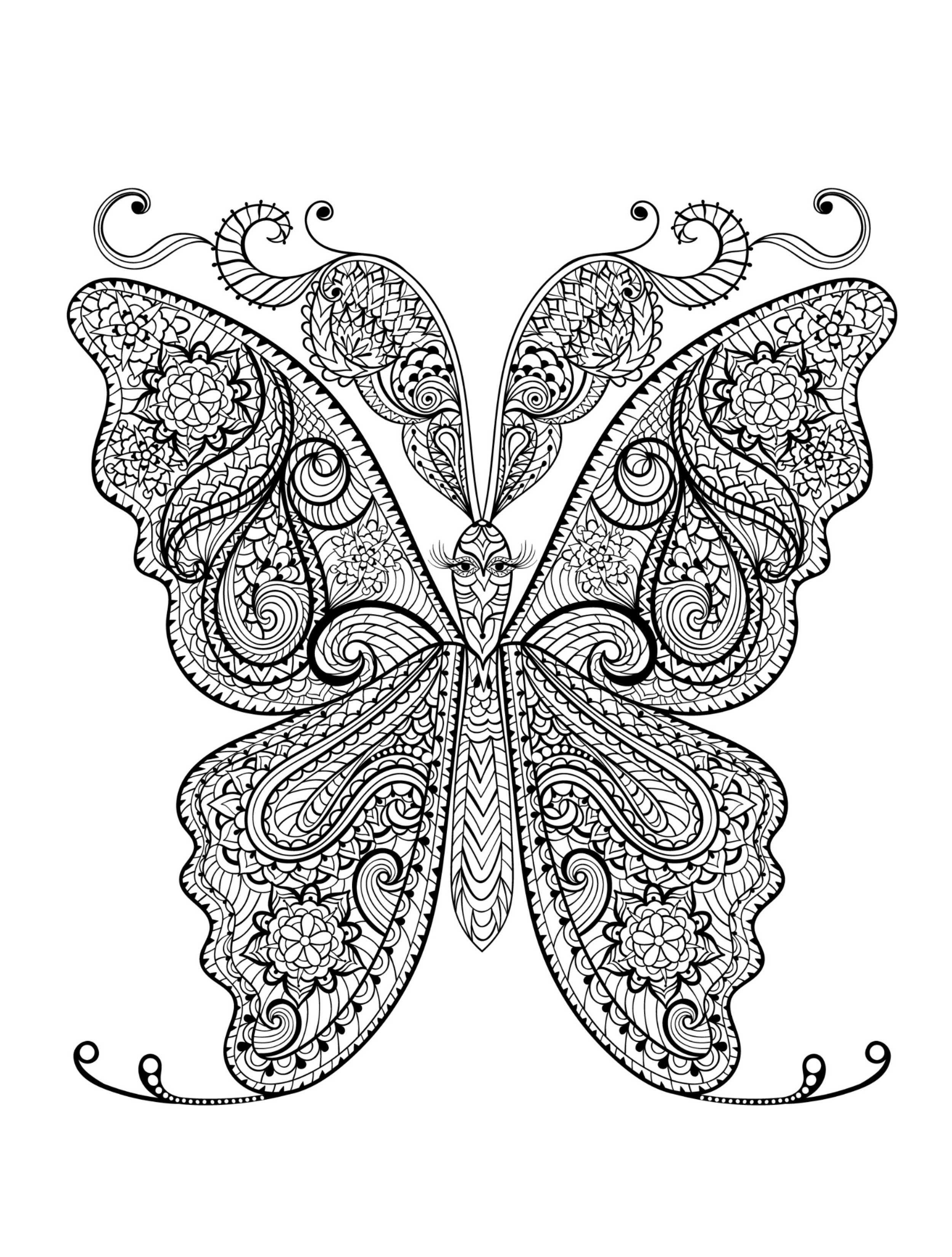 2500x3300 Hard Coloring Pages Of Butterflies Best Of Animal Coloring Pages
