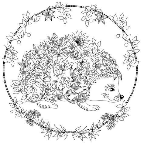 474x474 Cute Hedgehog Coloring Page Design Ms