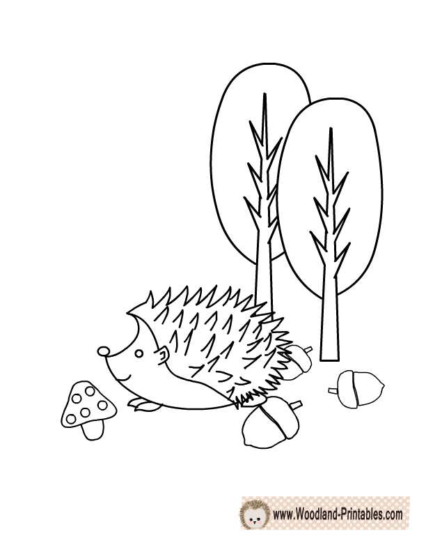 612x792 Free Printable Woodland Animals Coloring Pages