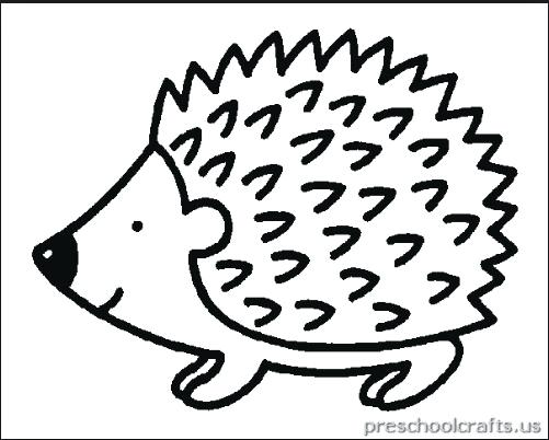 501x402 Hedgehog Coloring Page Hedgehog Coloring Pages Outstanding Sonic