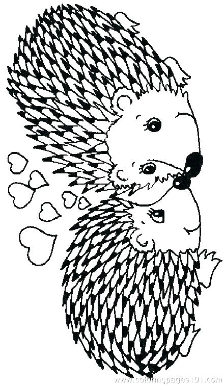 440x755 Porcupine Coloring Pages Porcupine Coloring Page This Is Porcupine