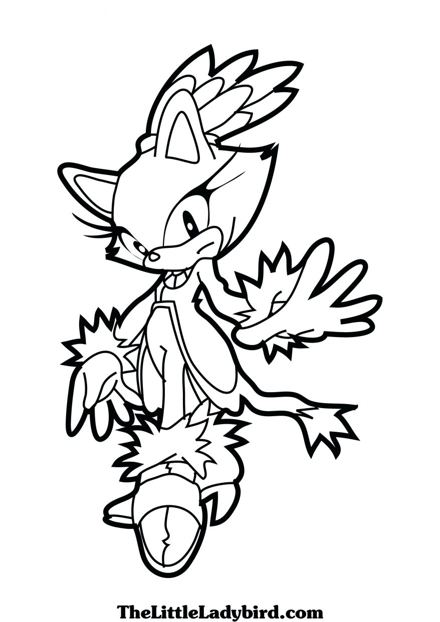 878x1242 Silver The Hedgehog Coloring Pages Funycoloring Brilliant