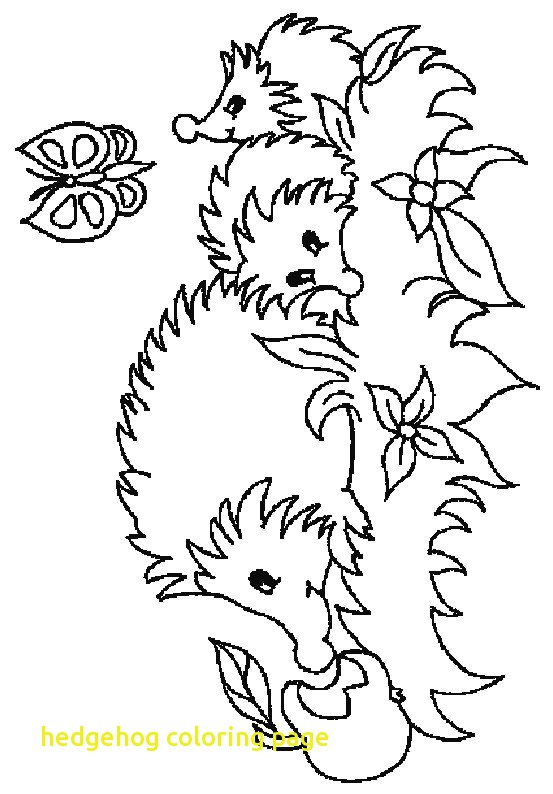 553x794 Cute Hedgehog Coloring Pages Archives