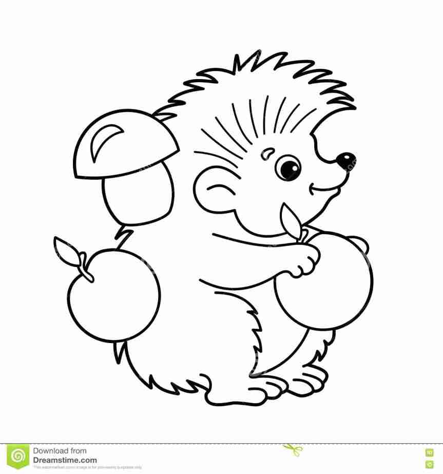 863x923 Cute European Hedgehog Coloring Page Dentist In Rudolph The Red