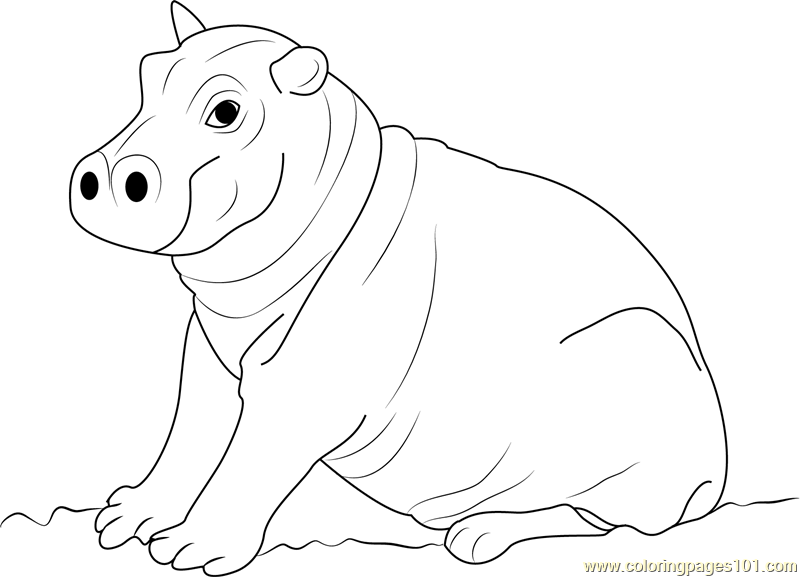 Cute Hippo Coloring Pages At Getdrawingscom Free For Personal Use