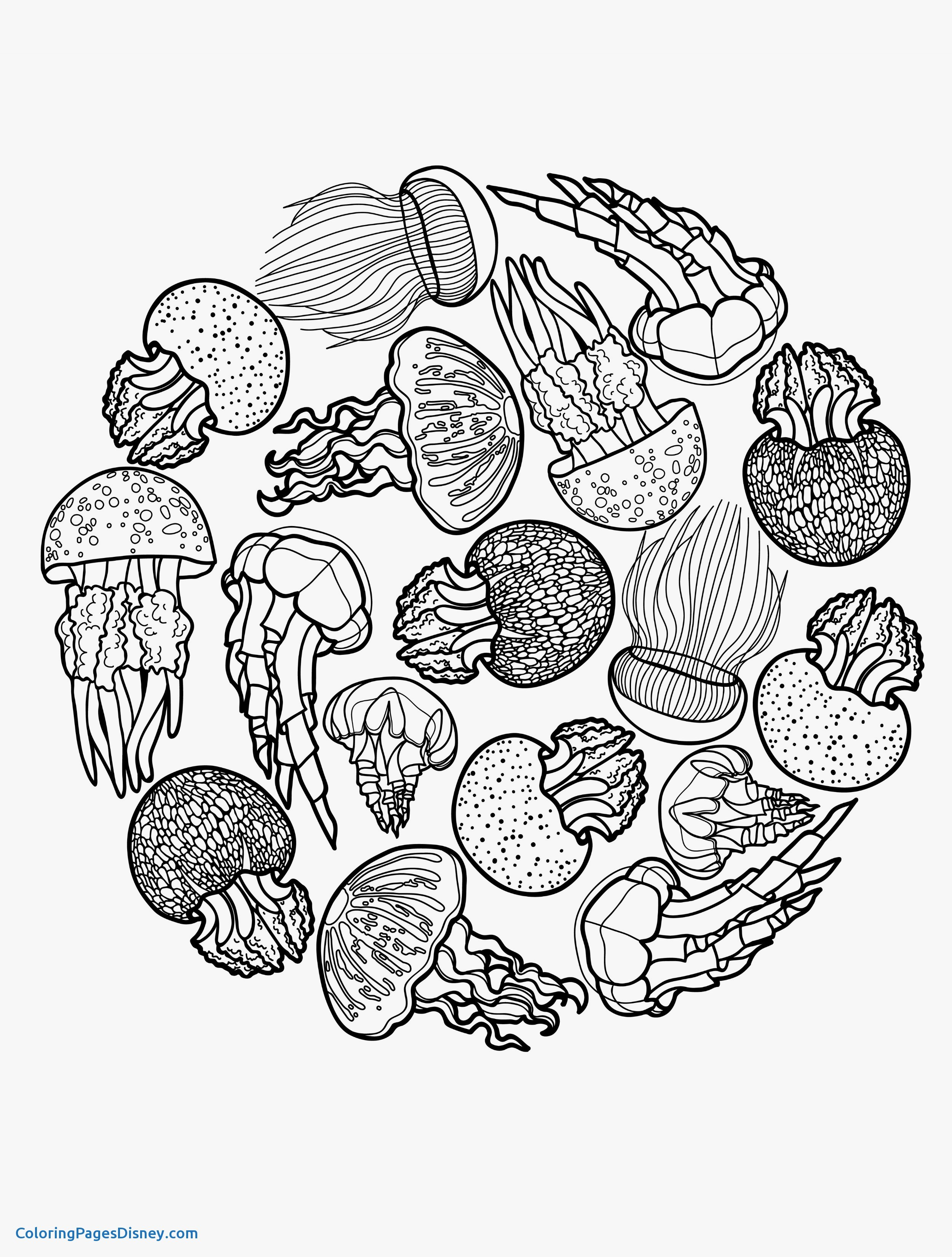 Cute Jellyfish Coloring Pages At Getdrawings Com Free For Personal
