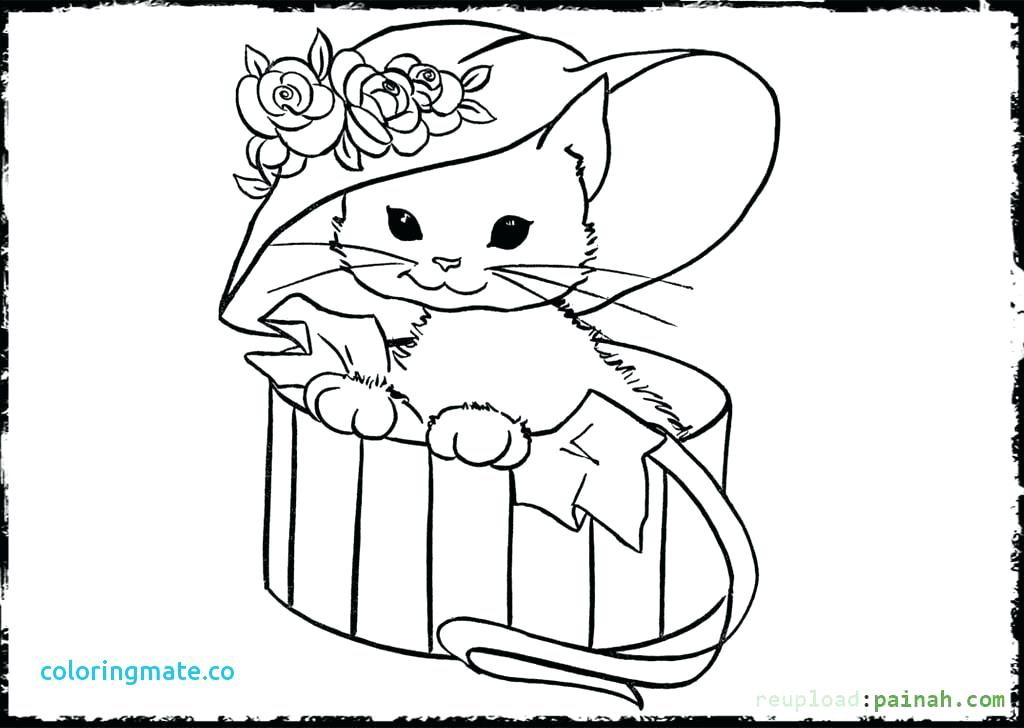 1024x728 Cute Kitten Coloring Pages To Print Search Of Kittens And Cats