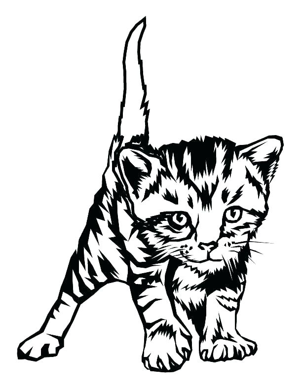 612x793 Kitten Coloring Page