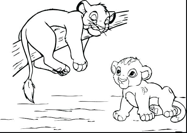 615x438 Lion Face Coloring Page Lion Coloring Pictures Cartoon Cute Lion