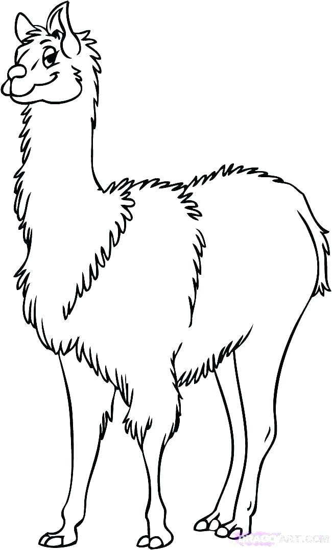 Cute Llama Coloring Pages At Getdrawings Com Free For Personal Use