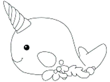 440x330 Narwhal Coloring Page Narwhal Coloring Page Narwhal Color N Is