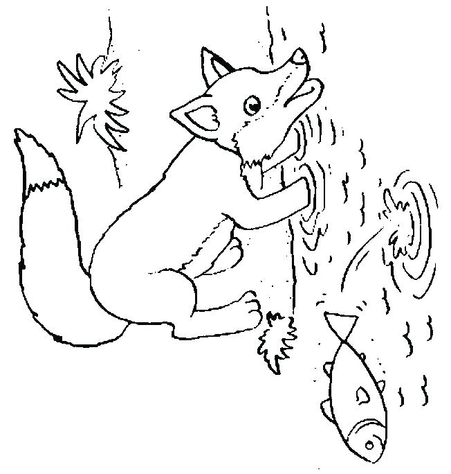 652x684 Baby Fox Coloring Pages Spotted Tailed Coloring Pages Coloring
