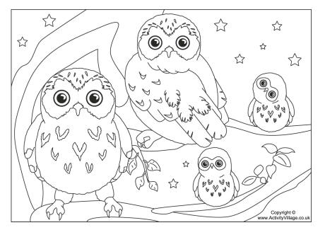 460x325 Owl Color Pages Fancy Ba Owl Coloring Pages For Your Coloring