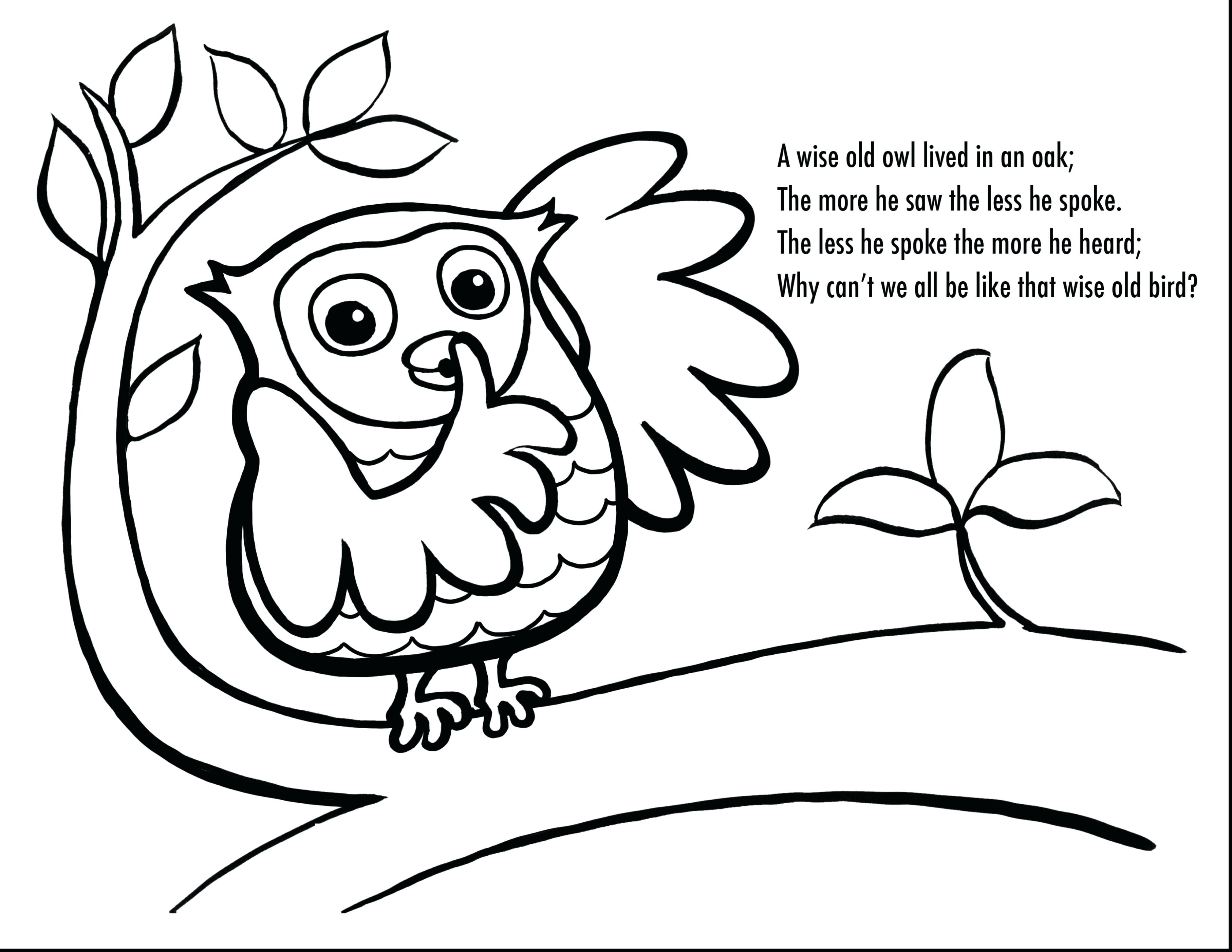 3630x2805 Coloring Pages Owls Cute Wagashiya