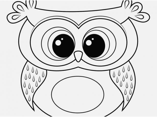 640x480 Cute Owl Coloring Pages Footage Approved Printable Owl Cartoon