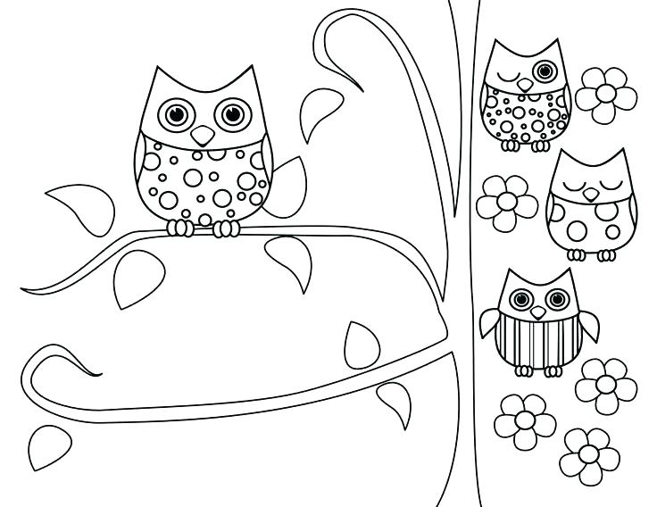 736x568 Cute Owl Coloring Pages To Print Owl Coloring Pages On Owl Free