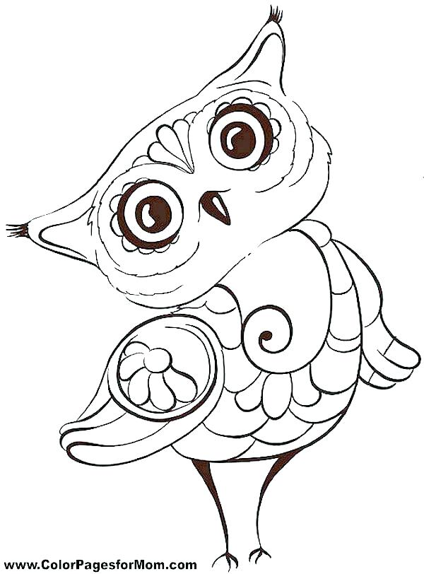 600x812 Free Owl Coloring Pages To Print