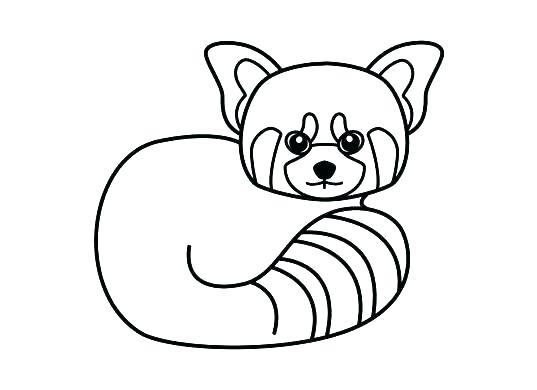 537x390 Cute Panda Coloring Pages Cute Panda Coloring Pages Panda Coloring