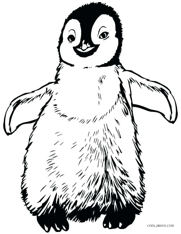 Cute Penguin Coloring Pages At Getdrawings Com Free For Personal