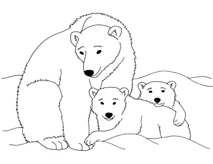730x563 Polar Bear Coloring Page Polar Bear Coloring Pages Printable Cute