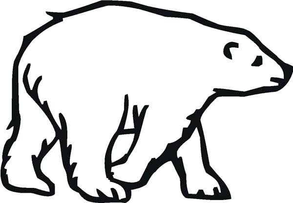 600x415 Polar Bear Coloring Pages Coloring Pages Draw A Polar Bear Cute