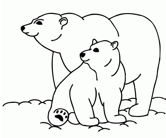 568x475 Cute Polar Bear Coloring Pages