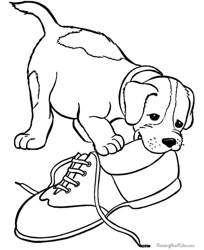 Cute Puppy Coloring Pages To Print At Getdrawings Com Free For