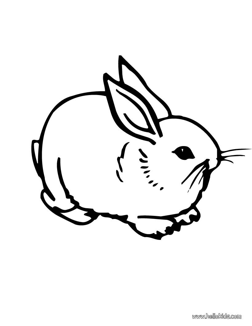 820x1060 Cute Bunny Coloring Pages Cute Bunny Coloring Pages Skiny