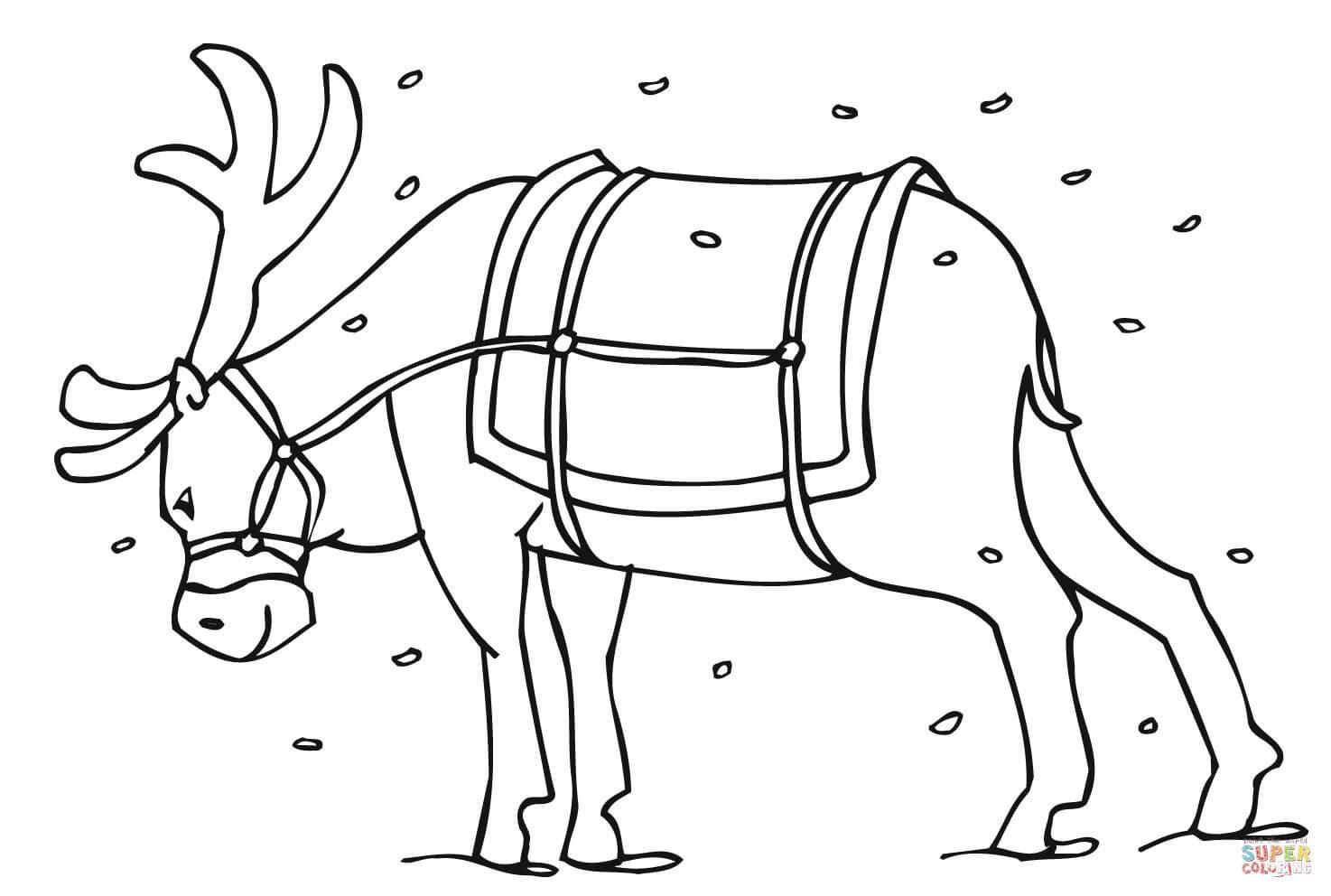 1474x992 animal coloring pages kids simple cute reindeer acpra