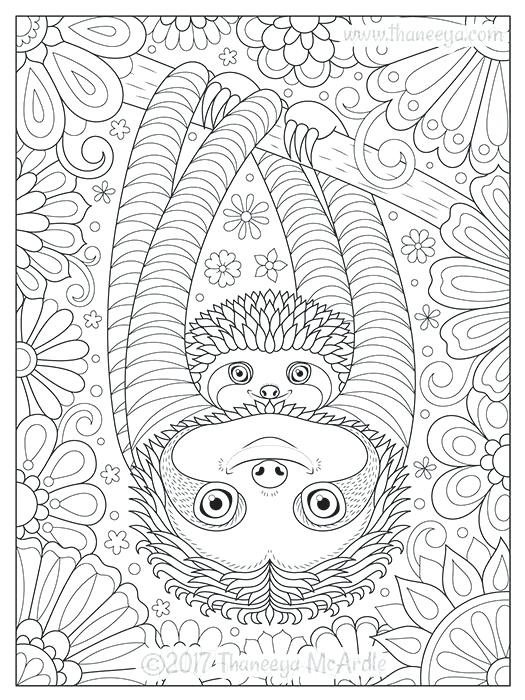 Cute Sloth Coloring Pages At Getdrawings Free Download